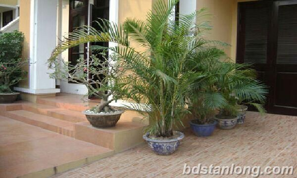 Ciputra villa for rent with 5 bedrooms with large garage (Ref: R23)